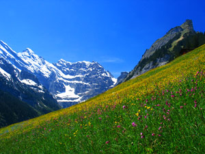Switzerland mountain scene for removals company